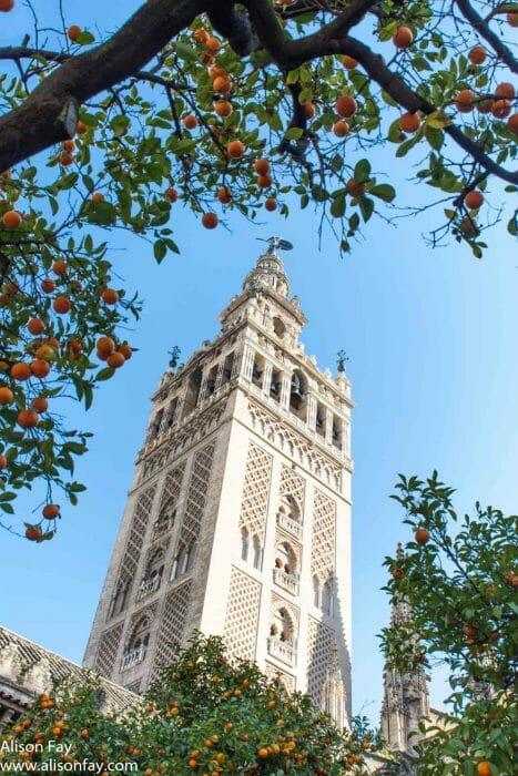 Photo of La Giralda in Seville