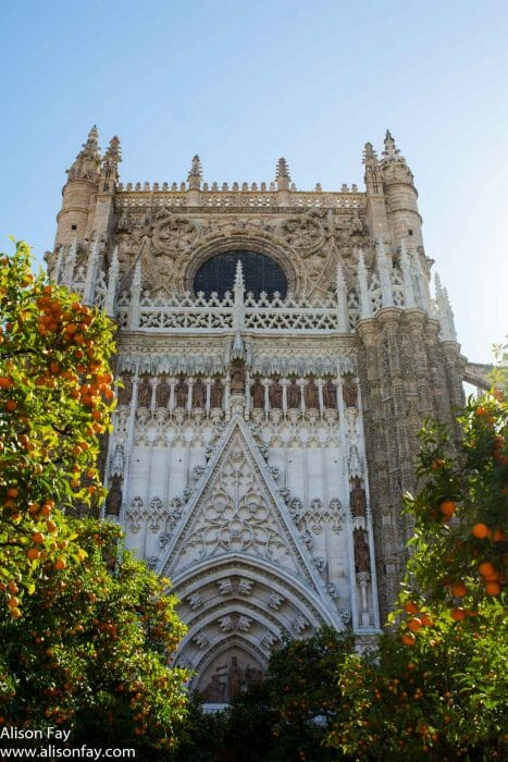 Travel photo of Seville's Cathedral